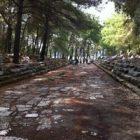 Taşlı Yol